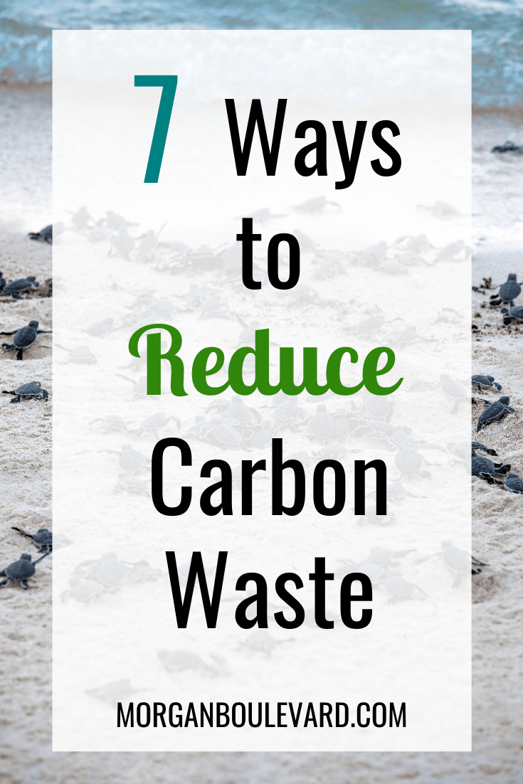 Ways to reduce carbon waste