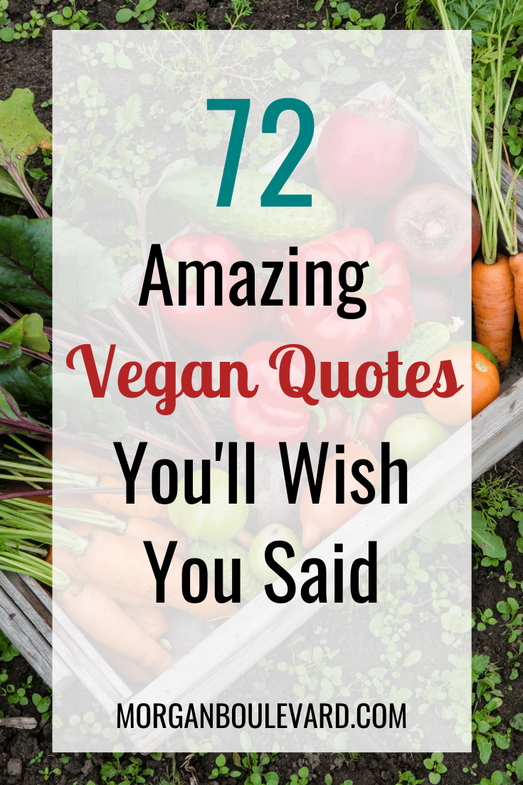 72 Amazing Vegan Quotes You\'ll Wish You Said