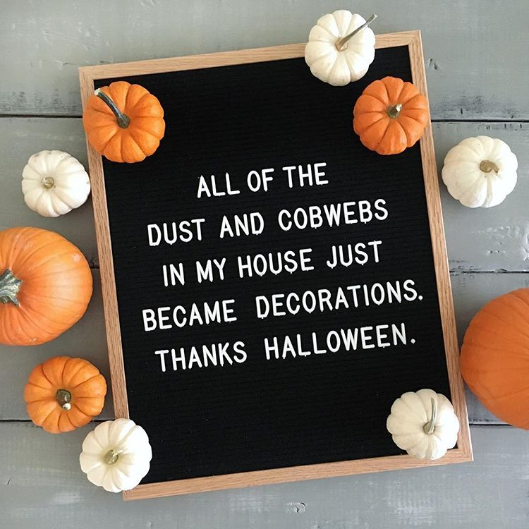 "Letter board that says ""all of the dust and cobwebs in my house just became decorations. thanks halloween."""