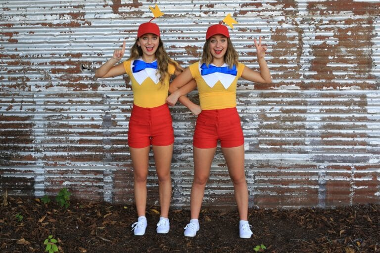 Tweedledee and Tweedledum Halloween costumes
