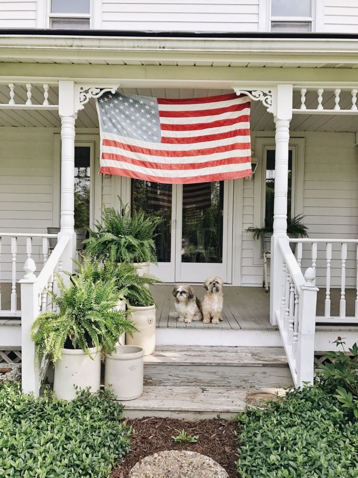 white porch with plants, 2 dogs, and big american flag
